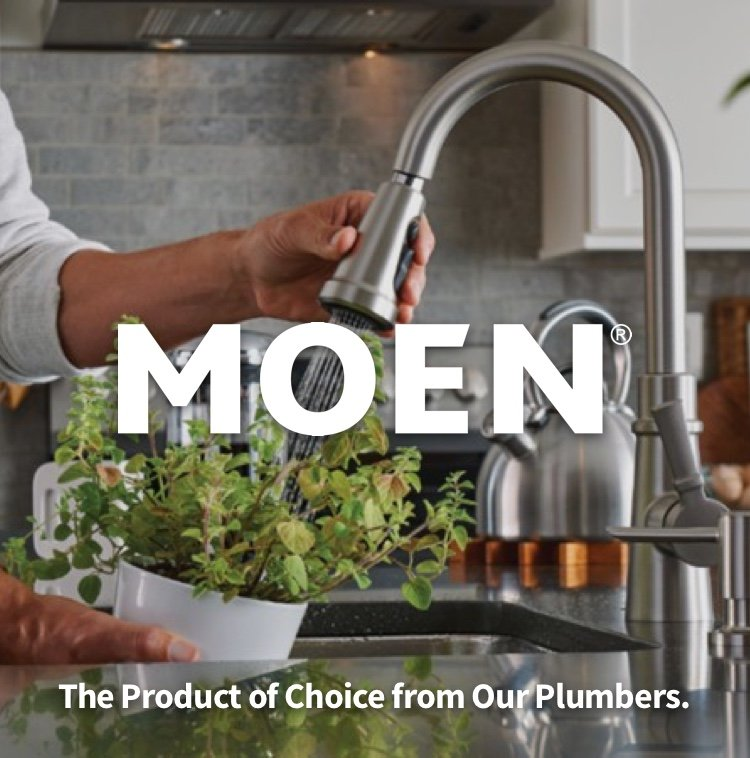 Moen kitchen faucet watering plant